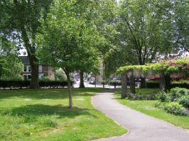 Barratt gardens and wood green common