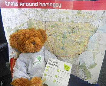 Walking Bear with Map and green cross code