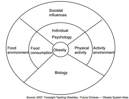 Childhood Obesity Diagram