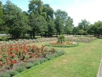 Downhills park flower beds