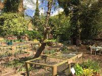 Queens Wood Community Garden